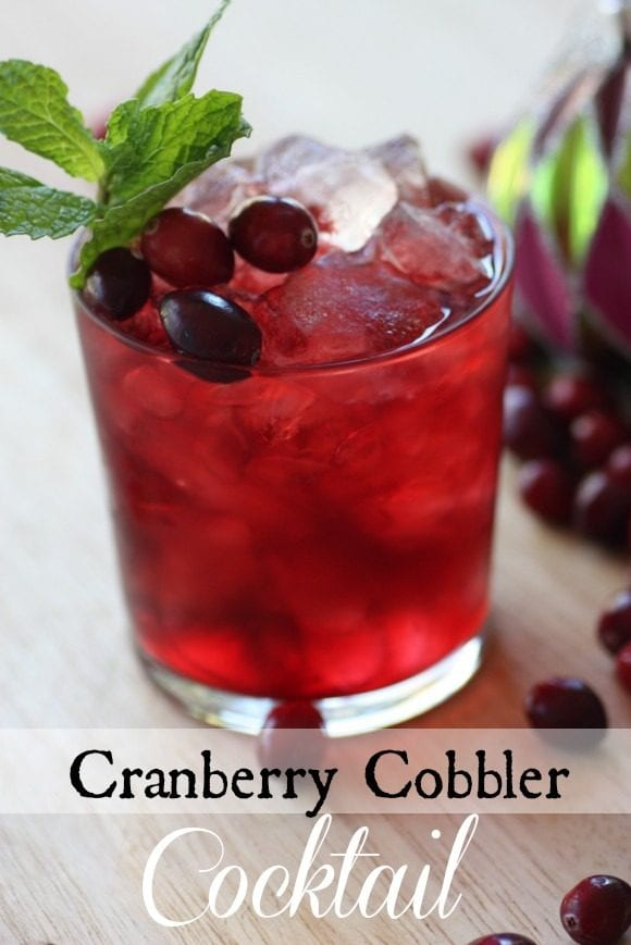 Cranberry Cobbler Cocktail | CatchMyParty.com