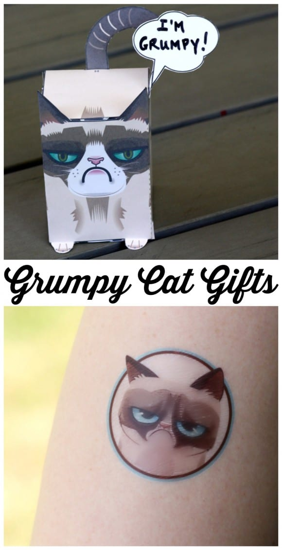 Grumpy Cat Gift Ideas | CatchMyParty.com
