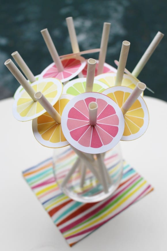 Fruit Slices Straw Toppers Free Printables | CatchMyParty.com