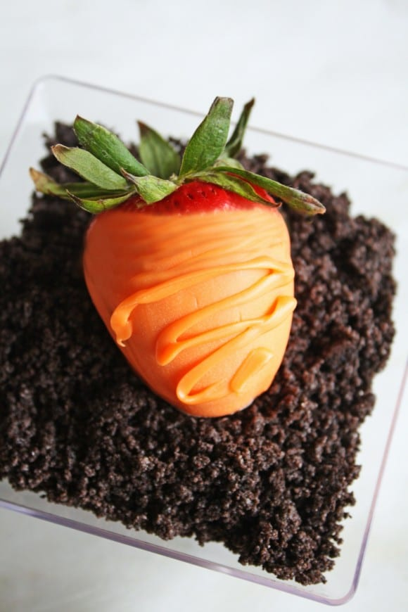 Carrot Patch Desserts | CatchMyParty.com