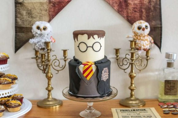 Harry Potter Birthday Party | CatchMyParty.com