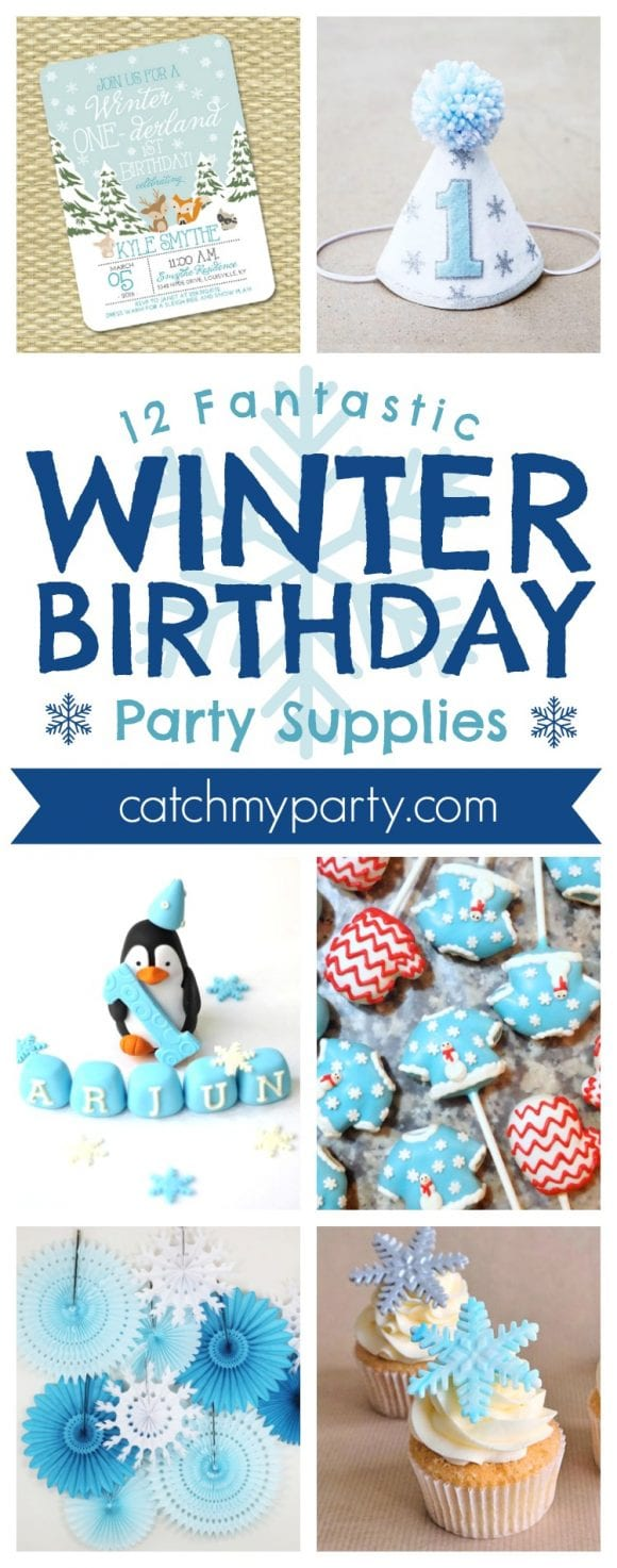 12 Fantastic Winter Birthday Party Supplies | CatchMyParty.com