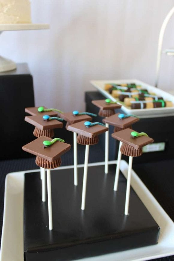 Graduations Cake Pops | CatchMyParty.com