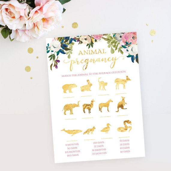 Baby shower party game supplies - Animal Pregnancy | CatchMyParty.com