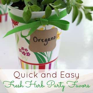 Fresh-herb-party-favors-diy