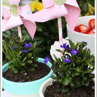 Spring-flower-pots-hero1-580x1539