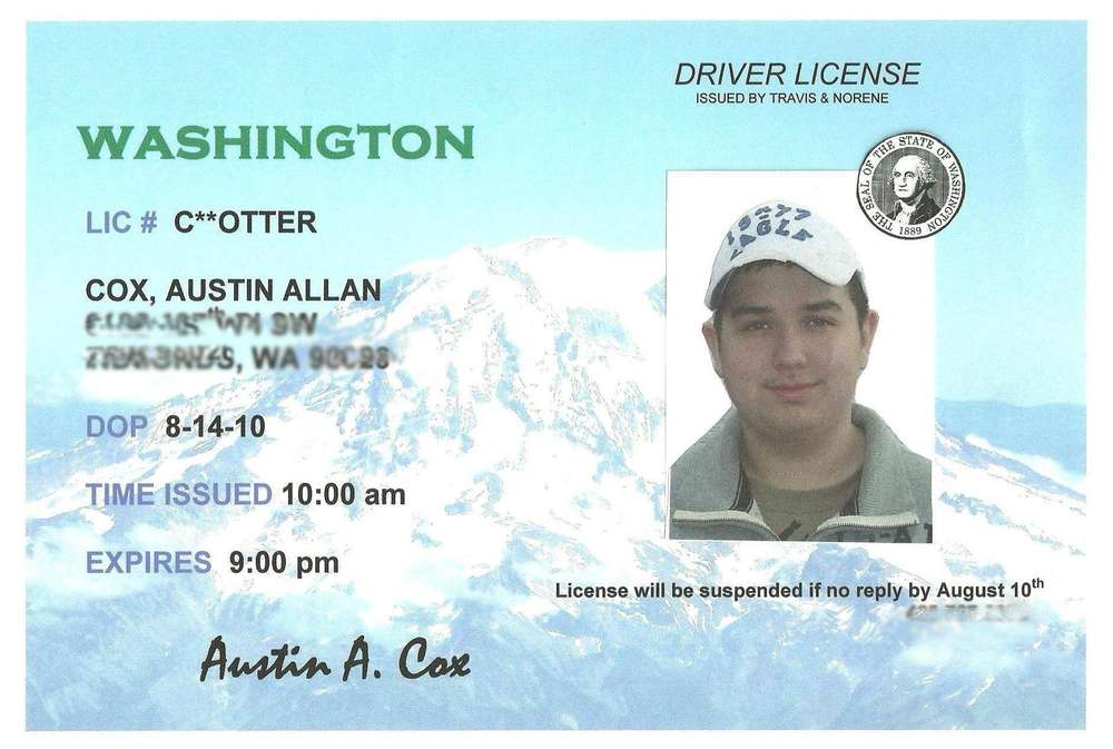 Drivers License Birthday Party Ideas