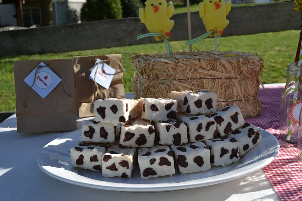Farm Theme Birthday Party Ideas Photo 5 Of 10 Catch My Party