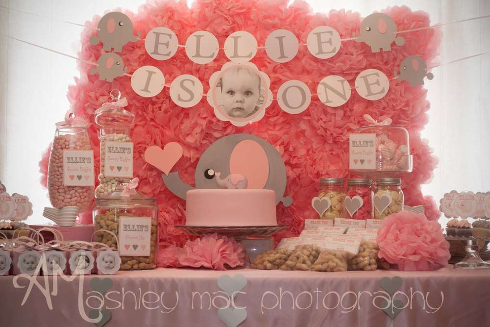 Pink grey elephants birthday party ideas photo 1 of 24 for 1st birthday party decoration ideas for girls
