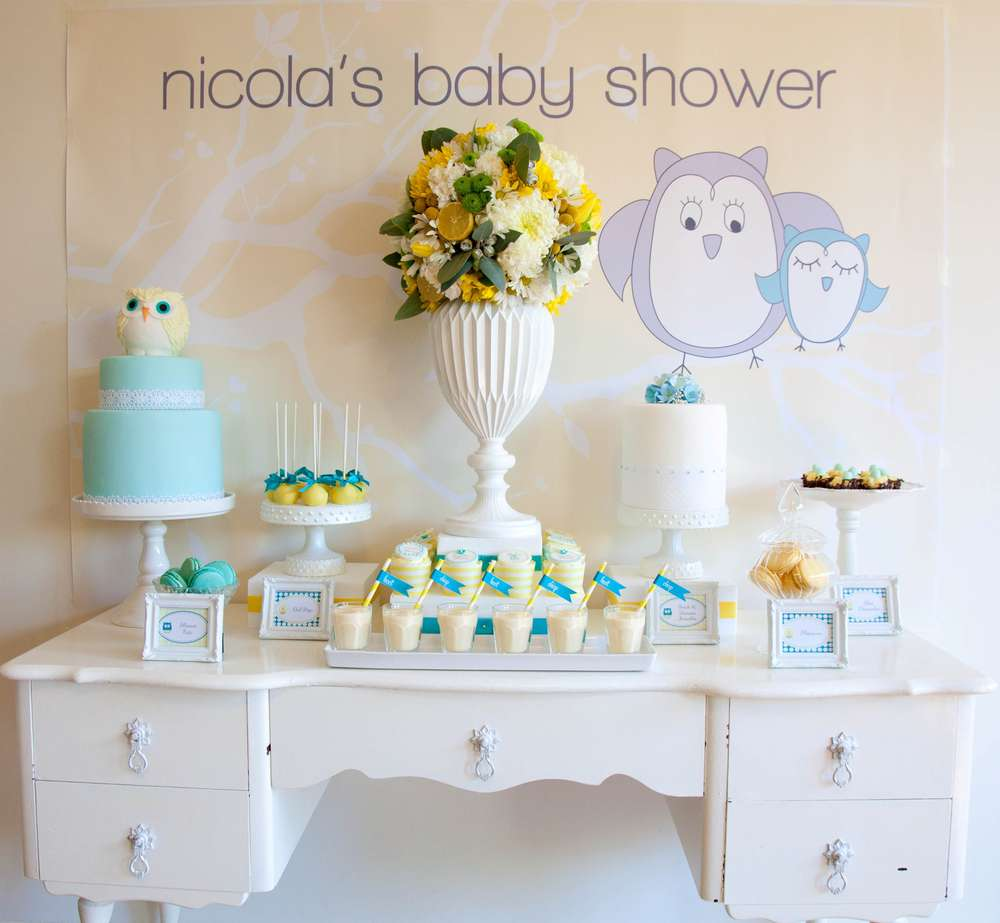 owl baby shower party ideas  photo  of   catch my party, Baby shower