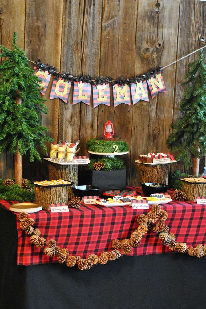 Lumberjack Camping Birthday Party Ideas Photo 1 Of 31
