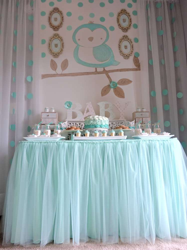Baby owl baby shower party ideas photo 1 of 25 catch for Baby welcome party decoration ideas
