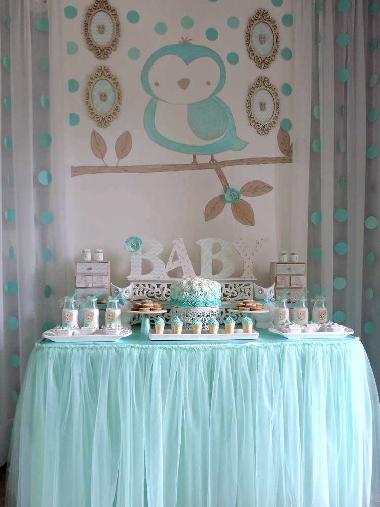 Baby Owl Baby Shower Party Ideas Photo 1 Of 25 Catch My Party