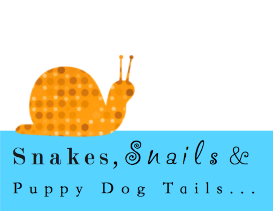 Snakes & Snails Triple First Birthday - Snakes, Snails & Puppy Dog Tails