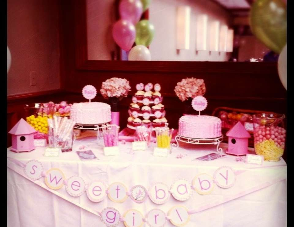 Sweet/Tweet Baby Girl Party - Birds / Feathers / Nest