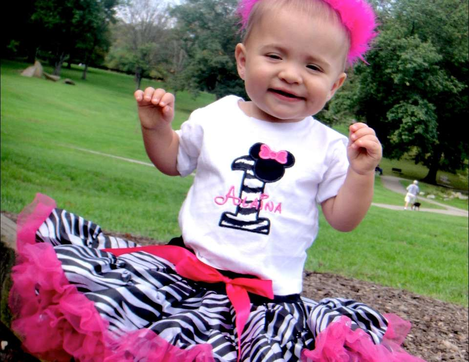 Alaina's Zebra & Pink Minnie Mouse 1st Birthday - Minnie Mouse and Zebra Print