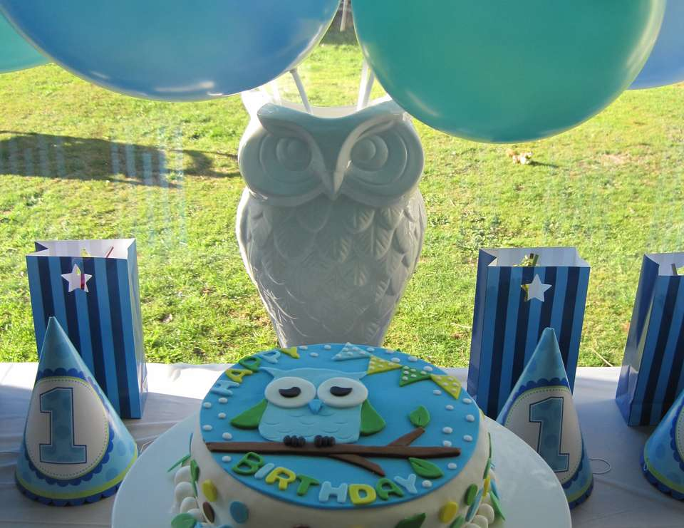 Brooklyn's First Birthday - Owl