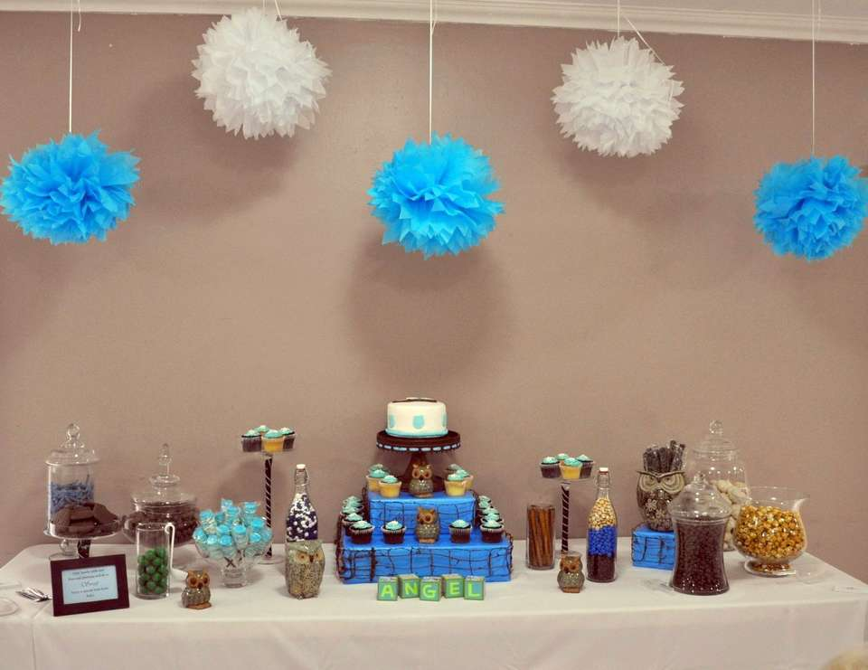 Owls Baby Shower - Owls