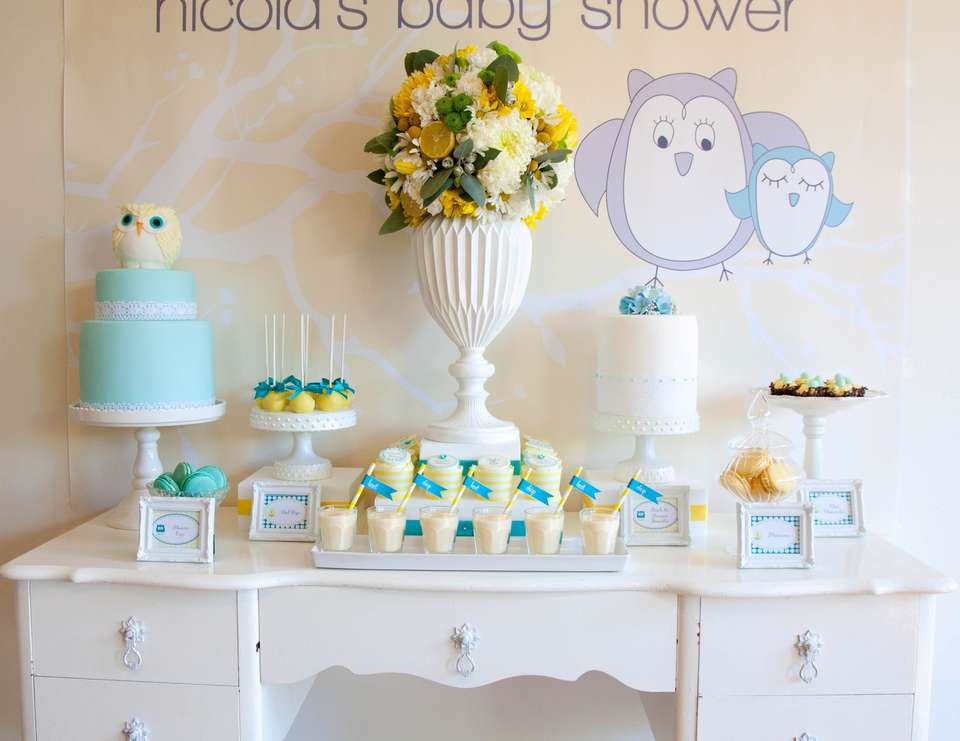 Owl gender neutral baby shower - Owl