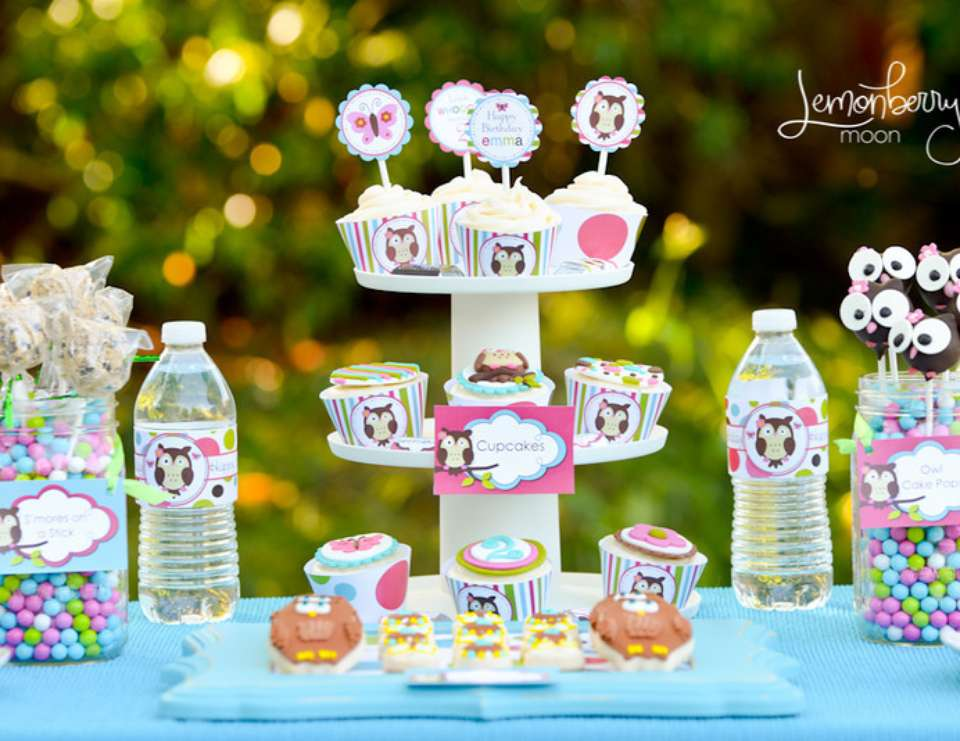 Owl Themed Birthday Party - Owl