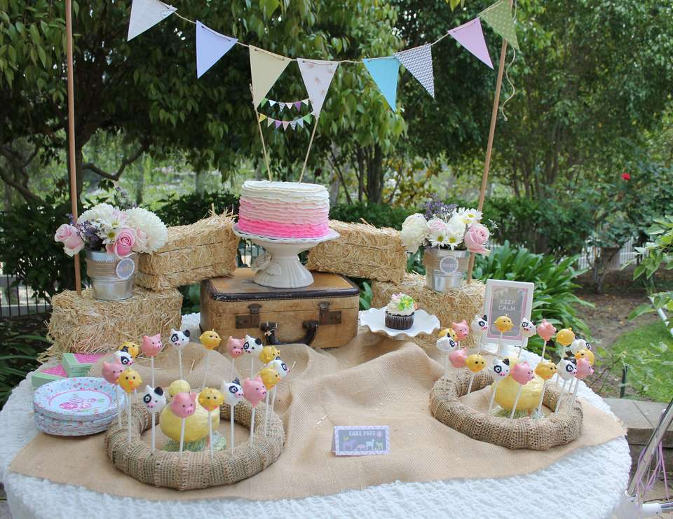 Ruby's 1st Birthday.. Petting Zoo Theme - Vintage Girly Western Petting Zoo
