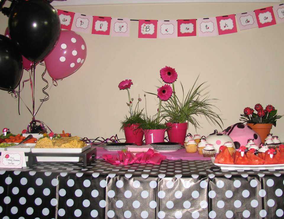 Lady Bug Birthday - Ladybug 1st birthday