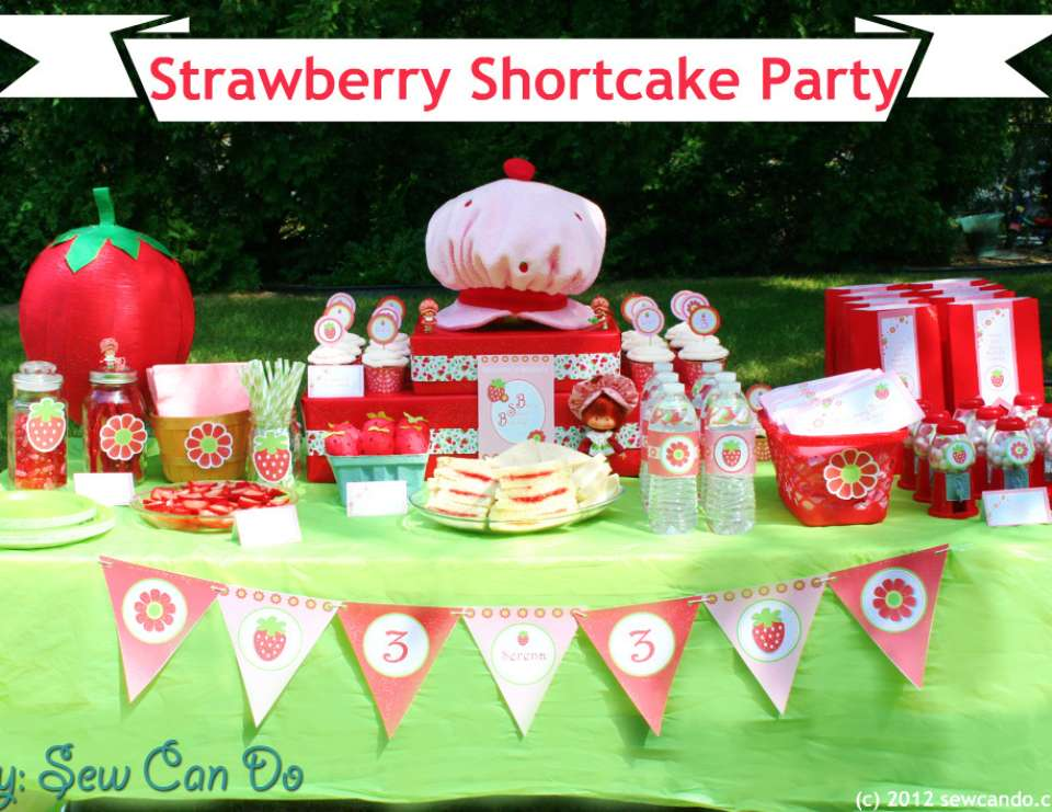 Vintage Strawberry Shortcake  - Strawberry Shortcake
