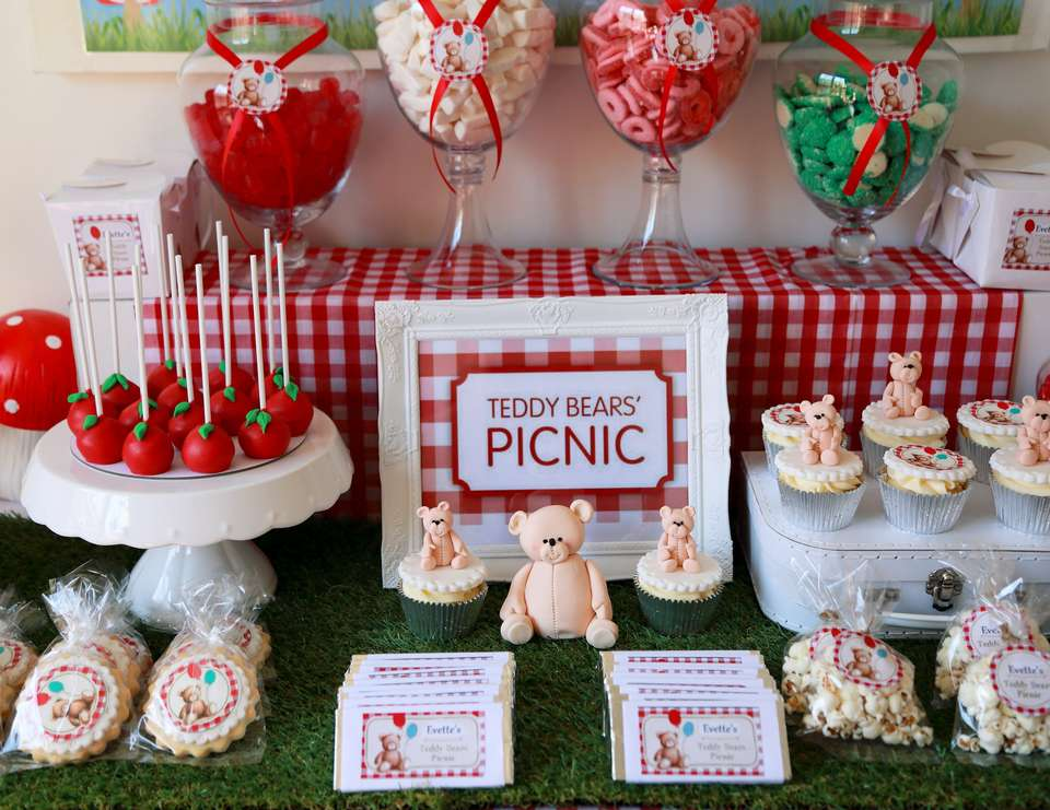 Teddy Bear Picnic / Birthday \