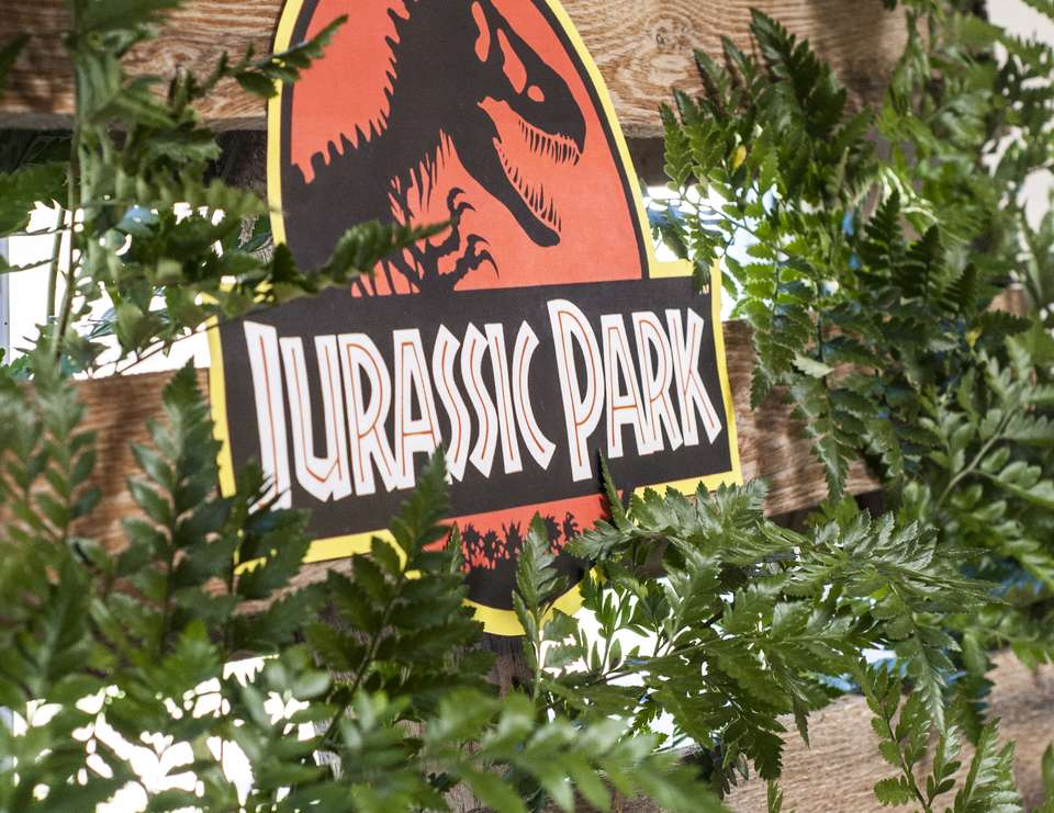 Jurassic Park Birthday Jurassic Park Party Catch My Party