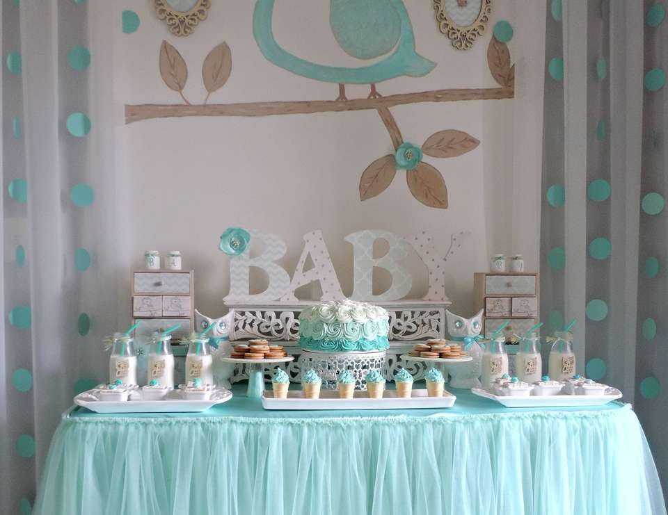 Baby owl baby shower welcome home baby catch my party for Welcome home decorations for baby