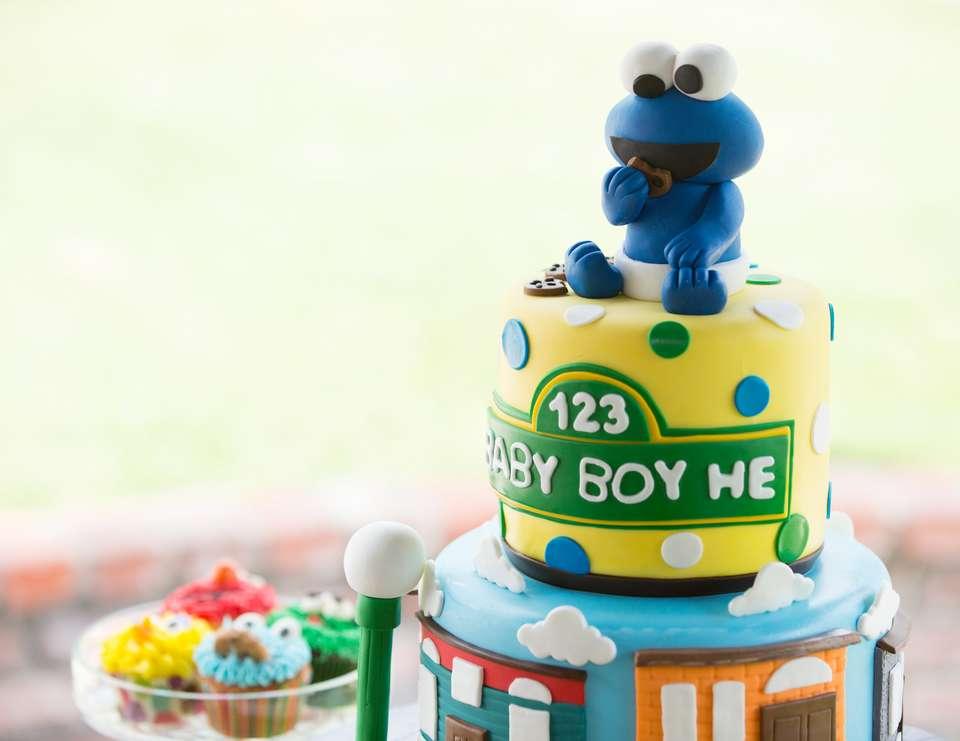 Sesame Street Baby Shower Baby Boy He Baby Shower Catch My Party
