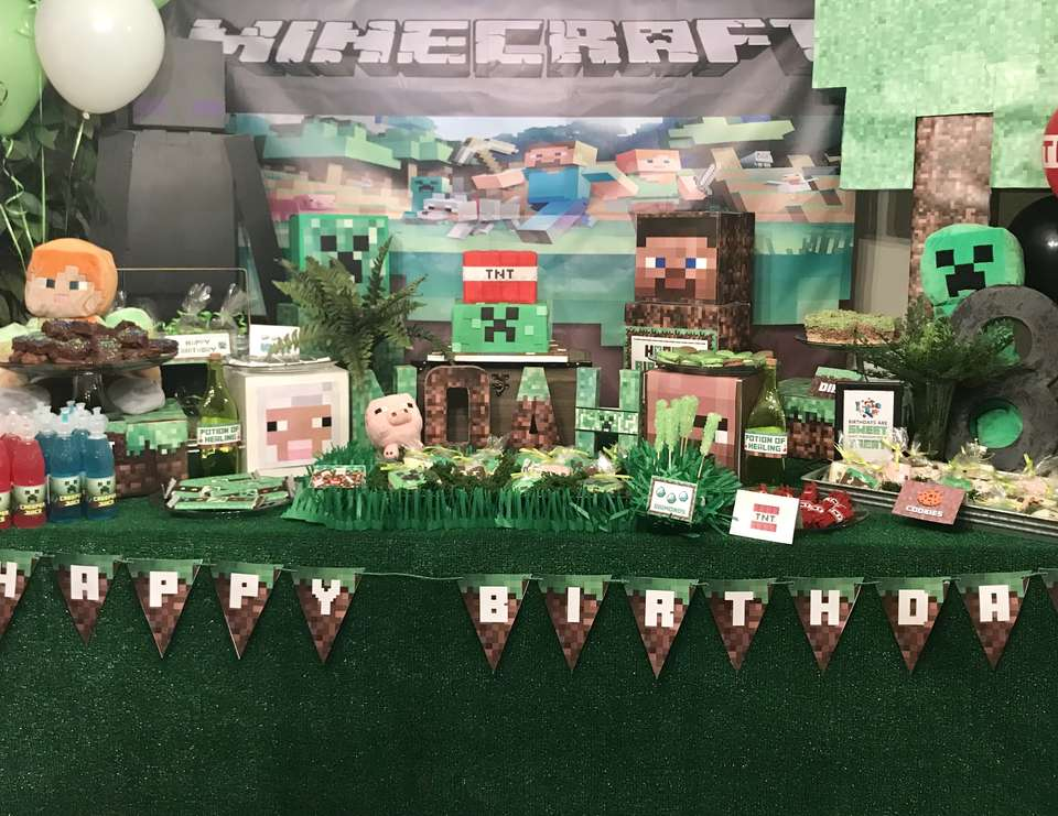 Noah's Minecraft Birthday - Minecraft