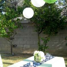 30th Birthday - Damask and Green
