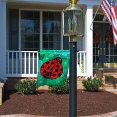 A Little Ladybug Garden Party - Ladybugs and Flowers