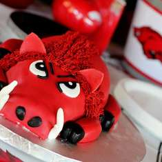 Hog Wild 1st Birthday - Arkansas Razorbacks