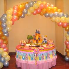 A Precious Party for a Pretty Princess  - Disney Princess
