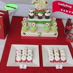 Ladybug Birthday Party - Ladybug Birthday Party