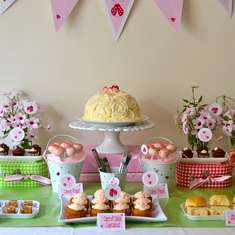 Ladybird Baby Shower - Ladybirds in pink and red