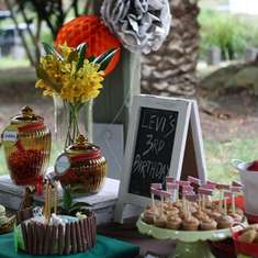 Levi's 3rd Birthday-  - Vintage, eclectic, outdoors