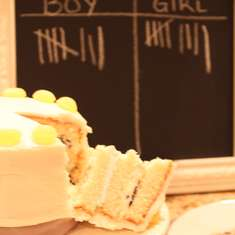 Gender Reveal Party - Boy or Girl?