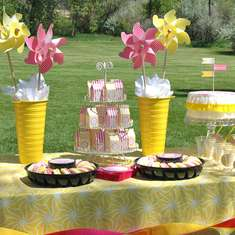Pink Lemonade Party - Kindergarten Graduation