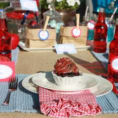 Rustic Star Spangled Banner Inspired Party - None