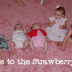 Welcome to the Strawberry Patch - Strawberry Shortcake