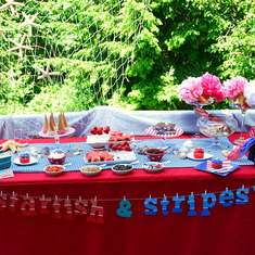 Starfish & Stripes ice cream party - Dessert Table
