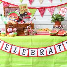 Watermelon Picnic Party - Watermelon