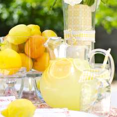 Lemony Ladies Luncheon - Lemons!