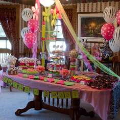 A Wild Twin Girls Baby Shower - Zebra Party