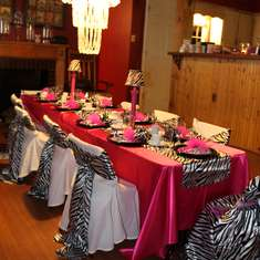 Holly's 2nd - Pink/Zebra Theme