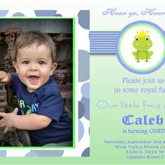 Baby C's First Birthday Party - Frog Prince