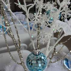 Finley's 6th Birthday  - Winter Wonderland Snowflake Princess Party